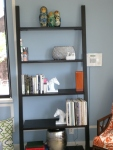 Leaning Shelf from Crate & Barrel ala our roomie J.