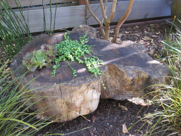Diy tree stump projects plans diy how to make six03qkh for Diy tree stump projects