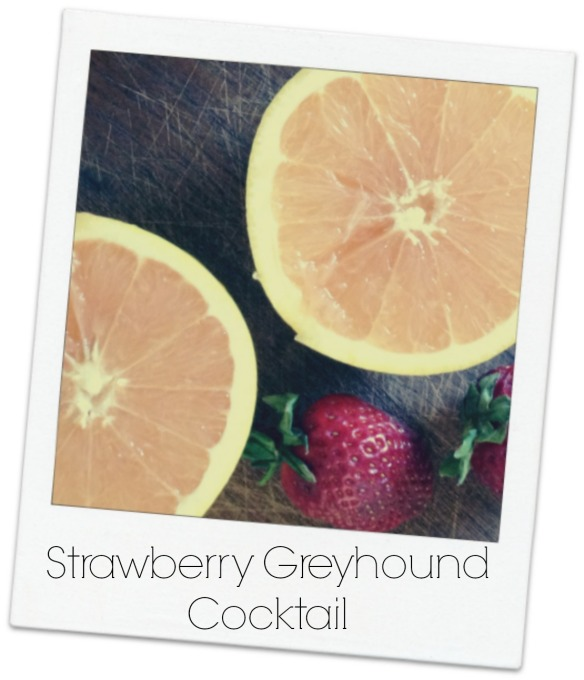 Strawberry GreyhoundPolaroid