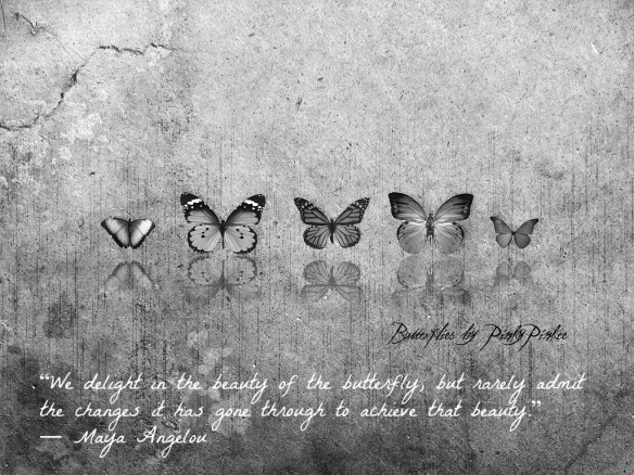 Butterflies Quote_Maya Angelou