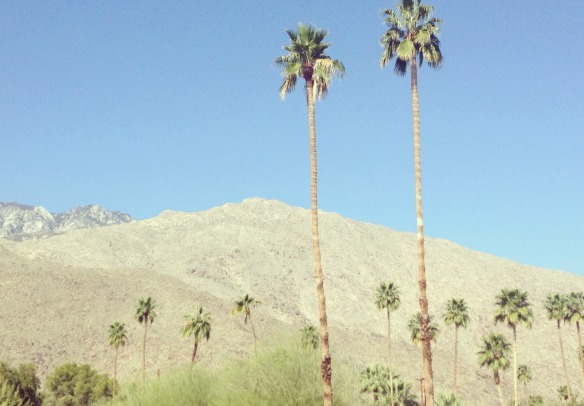 House View Palm Springs