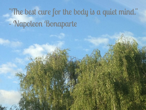 Napoleon Bonaparte Quiet Mind Quote
