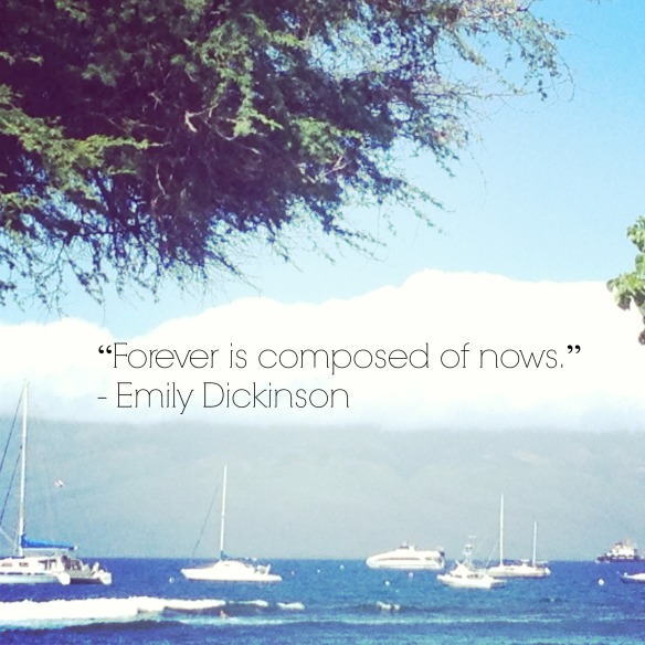 Emily Dickinson Quote_SiezeTheDay