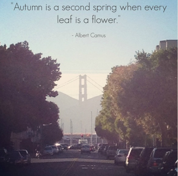 Autumn Quote_Albert Camus