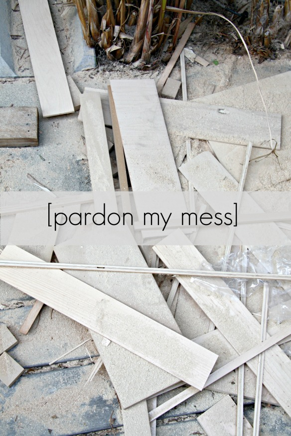 Pardon My Mess